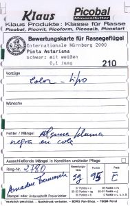 Alem. 2000