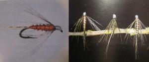 moscas-mosquitos